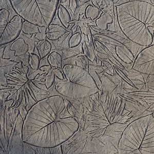 Seamless-Forest-Floor-Stamped-Concrete